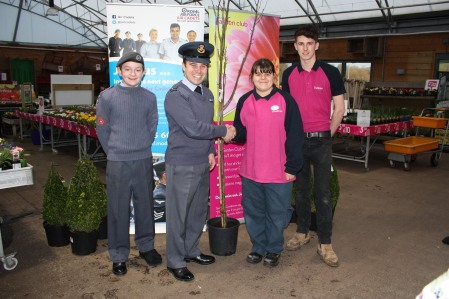 Dobbies 75th Anniversary Trees Cadet.jpg